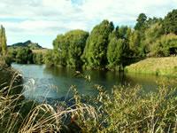 Whanganui River, Whanganui National Park